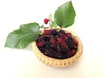 Extrakt för mullbärsträdfruktblad i korg Royaltyfria Bilder