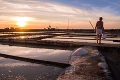 Extraktion des Seesalzes in Aveiro, Portugal Lizenzfreies Stockfoto