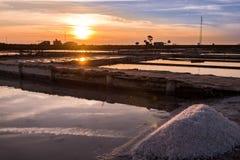 Extraktion des Seesalzes in Aveiro, Portugal Lizenzfreie Stockbilder