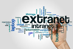 Extranet word cloud concept on grey background Royalty Free Stock Photo