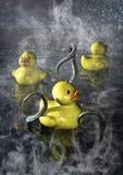 Extranjero con el juego de los tentáculos en una piscina Imagenes de archivo