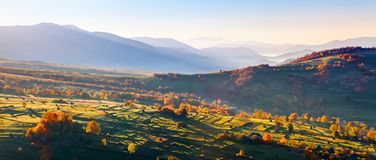 Extraordinary autumn landscape. Green fields with haystacks. Trees covered with orange and crimson leaves. Mountain landscapes. Nice rays of the sun. Location Stock Photography