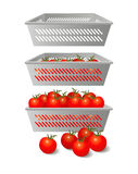 The extraordinary demand for tomatoes Royalty Free Stock Images
