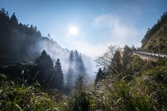 Natural landscape of fog and mist with mountain and treelines stock images
