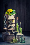 Extraordinary machine to make oil with sunflower and seeds Stock Images