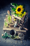 Extraordinary virgin oil machine with sunflower and seeds Royalty Free Stock Photo