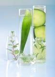 Extrato das plantas. Química natural. Imagem de Stock