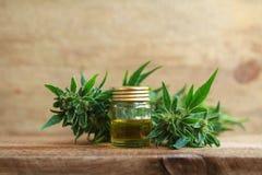 Extrato do óleo do cannabis e planta médicos do cânhamo fotografia de stock
