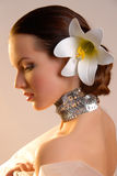 Extravagant bride Stock Image