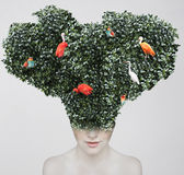 Extravagant Nature. Artistic surreal portrait of a girl with a huge headgear of foliage and colorful birds on it isolated on light grey background Stock Image