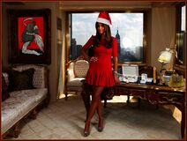 Extravagantly Wealthy FIrst Lady's Xmas Greetings Royalty Free Stock Photos