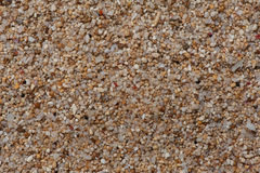 Extream close-up to the sand of coral  and shell flinders. Stock Photo