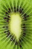 Extreem Close-up van Vers Groen Kiwi Fruit Slice Stock Afbeelding