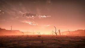 Extreem griezelig droog nevelig woestijnlandschap met dode bomen bij zonsondergang Bewolkte hemel Royalty-vrije Stock Afbeeldingen