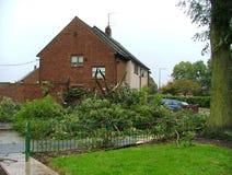 Extreem weer, rampenstreek, gevallen bomen, royalty-vrije stock foto