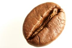 Макрос кофейных зерен Стоковое фото RF