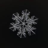 Extrem closeup av den naturliga snöflingan fotografering för bildbyråer