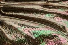 Extrem förstoring - klipska vingdetaljer Royaltyfria Bilder