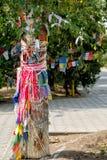 Extrem närbild av ett buddistiskt järnekträd royaltyfria foton