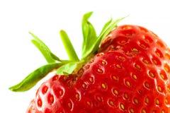 Extrem närbild för jordgubbe på vit bakgrund Fotografering för Bildbyråer