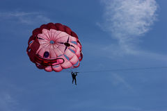extrem parasailingsport för affärsföretag Royaltyfria Foton