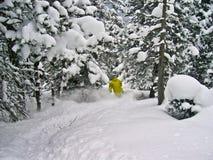 extrem skier Arkivfoton