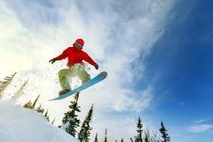 extrem snowboarder Royaltyfri Foto