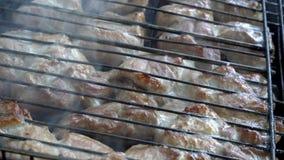 Extremadamente primer de pedazos de carne asada, que se prepara en los carbones en la parrilla Una barbacoa en el aire abierto almacen de metraje de vídeo