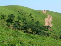 extremal дорога Стоковая Фотография RF
