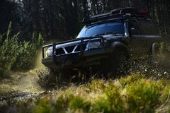 Extreme, challenge and 4x4 vehicle concept. Offroad race on nature background. Car racing in forest. SUV or offroad car. On path covered with grass crossing stock photo
