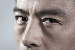 Extreme Close up on angry mans face Royalty Free Stock Photo
