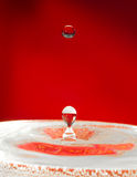 Extreme close-up. Falling droplets of water Stock Images