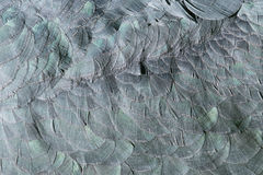 Extreme close-up of feathers of an marabu royalty free stock photos