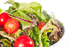 Extreme close up of fresh tomato and lettuce salad Stock Images