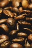 Extreme Close-Up Of Freshly Roasted Coffee Beans royalty free stock photography