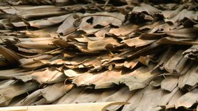 Dried  roofing Palm-tree leaves  Bagan, Myanmar stock video footage