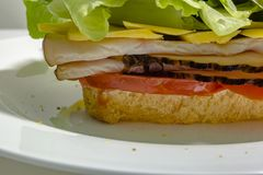 Extreme close up macro of the bottom of a sandwich on a white pl Royalty Free Stock Photos