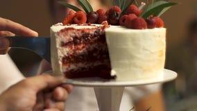 Extreme close-up medio sectie van een cake van het jonggehuwde scherpe huwelijk De charmante bruiden die een huwelijkscake snijde stock footage