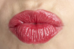 Extreme Close-Up Of Middle Aged Woman's Lips Stock Image
