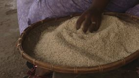 Seated woman with a tray of rice, Conakry, Guinea. Extreme close up pan, high angle shot, seated woman with a traditionally woven brown flat tray full of white stock video