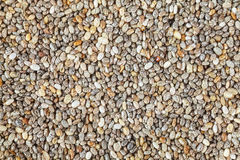 Extreme close up picture of chia seeds. Royalty Free Stock Image