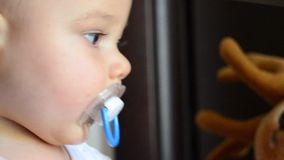 Extreme close up shot of six months old baby boy with dummy.  stock video footage