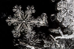 Extreme Close Up of Snow Flake Stock Images