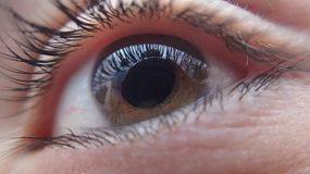 Extreme Close-up of Woman Eye stock images