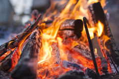 Extreme Closeup of Bonfire Burning with Red and Yellow Saturated Stock Photos