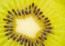 Extreme closeup of kiwi fruit Royalty Free Stock Images