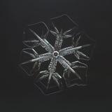 Extreme closeup of natural snowflake.  Royalty Free Stock Image