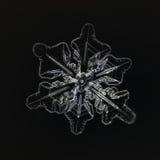 Extreme closeup of natural snowflake.  Royalty Free Stock Photo