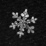 Extreme closeup of natural snowflake.  Stock Photos