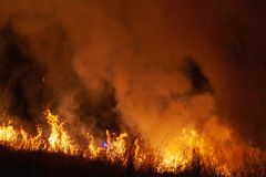 Extreme closeup of raging grass wildfire at night. Inspiration for danger, bushfire warning, posters or memes. Wallpaper or. Extreme closeup of raging grass royalty free stock photos